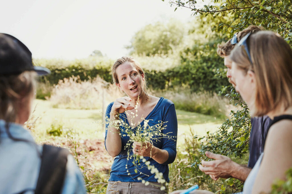 A group of people learning to forage in the countryside